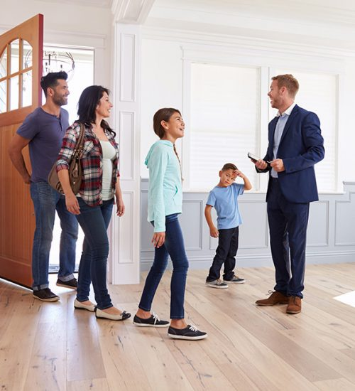 Property To Buy, Rent Or Sell, Letting Agents Near Me